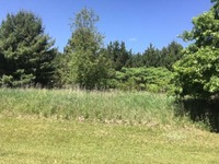 Home for sale: Lot 12 99th Ave., Chippewa Falls, WI 54729