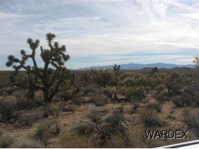 11900 S. Sherry Rd., Yucca, AZ 86438 Photo 3