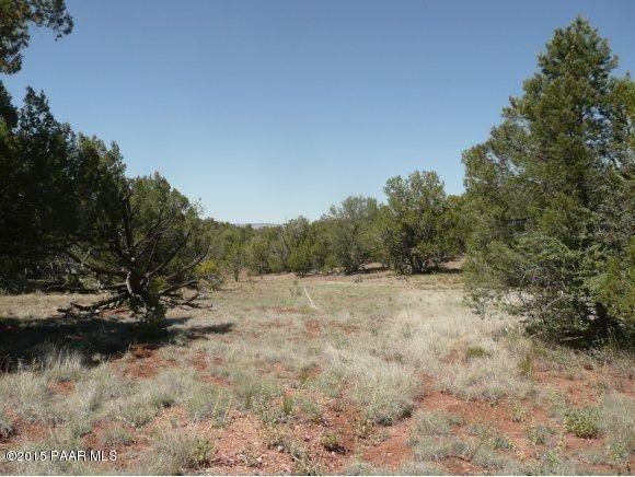 1024 Sierra Verde Ranch, Seligman, AZ 86337 Photo 8