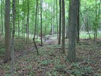 Home for sale: 9400 Kress Rd., Roanoke, IN 46783