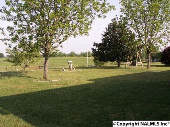 3372 County Rd. 52, Rogersville, AL 35652 Photo 23