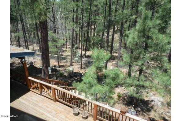 920 W. Billy Creek Dr., Lakeside, AZ 85929 Photo 22
