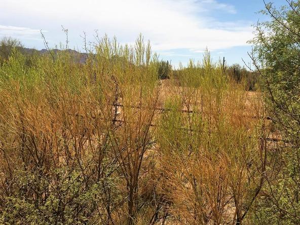 28255 N. 144th St., Scottsdale, AZ 85262 Photo 1