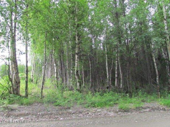 2011 W. Lake Lucille Dr., Wasilla, AK 99654 Photo 7