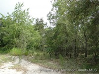 Home for sale: 0 Long Lake Dr., Hudson, FL 34667