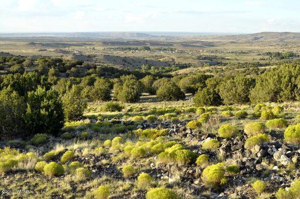 199.54 Acres, Concho, AZ 85924 Photo 10