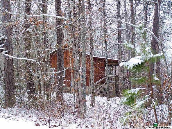 1226 County Rd. 106, Mentone, AL 35984 Photo 8