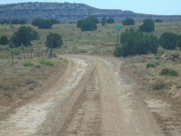 3365 N. Ranch Way, Snowflake, AZ 85937 Photo 3