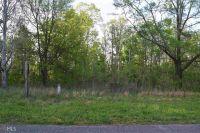 Home for sale: 0 Mckibben Rd., Buchanan, GA 30113
