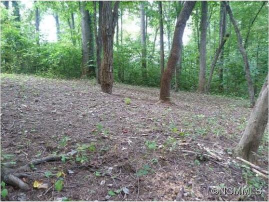 515 Hagen Dr., Hendersonville, NC 28739 Photo 3