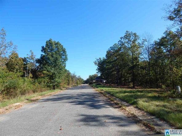135 Dream View Terrace, McCalla, AL 35111 Photo 3