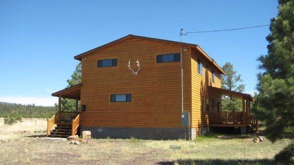 10 N. 1349, Vernon, AZ 85940 Photo 41