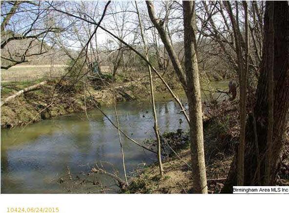 2 Horton Mill Rd., Oneonta, AL 35121 Photo 1