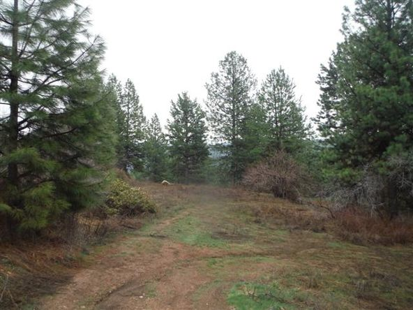 Lot 82 Boise Holcomb # 3, Boise, ID 83716 Photo 4