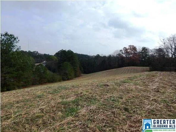 401 Beasley Rd., Gardendale, AL 35071 Photo 20