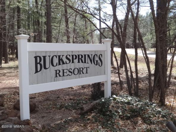 6126 Buck Springs Rd., Pinetop, AZ 85935 Photo 136