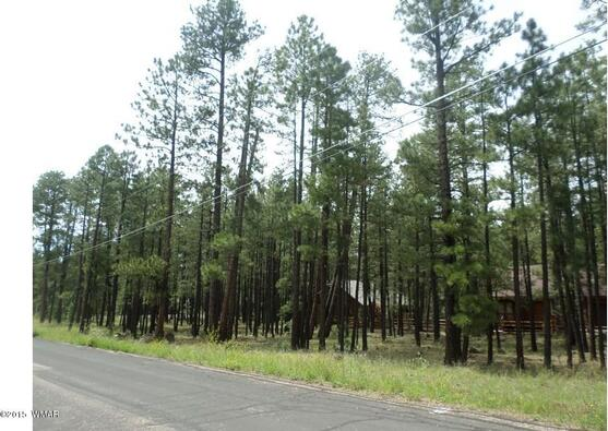 7828 Buck Springs Rd., Pinetop, AZ 85935 Photo 7