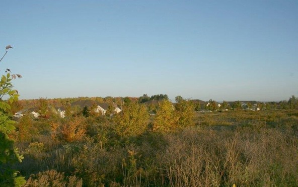 7303 Stonefield Trail, Rothschild, WI 54474 Photo 6