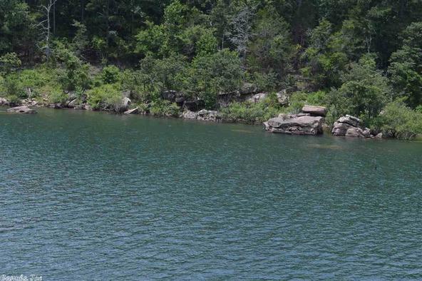 399 Lizard Trail, Greers Ferry, AR 72067 Photo 38