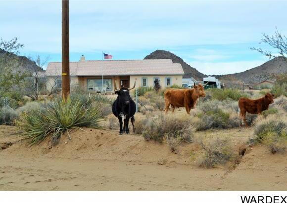 249 W. Red Wing Canyon Rd., Kingman, AZ 86409 Photo 30