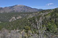 Home for sale: Lot 5d Cielo Vista Loop, Jemez Springs, NM 87025