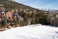 Home for sale: 102 +104 Wild Spring Ln., Basalt, CO 81621