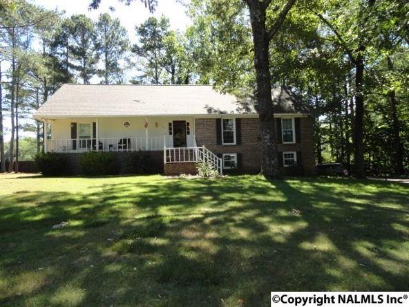 1109 Wildwood Dr., Scottsboro, AL 35769 Photo 20