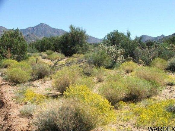 3578-B E. Desert Willow Dr., Yucca, AZ 86438 Photo 6