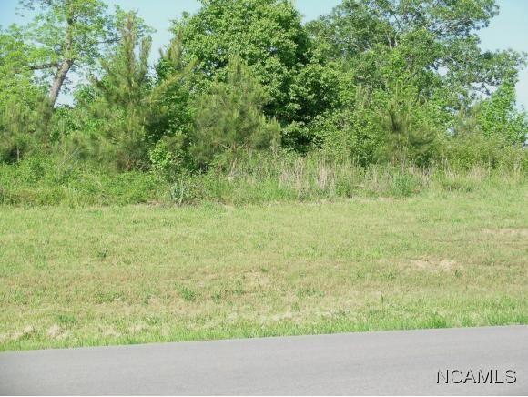 611 Teem Rd., Cullman, AL 35057 Photo 3