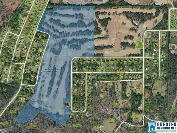 1505 S.W. Country Club Dr., Jacksonville, AL 36265 Photo 38