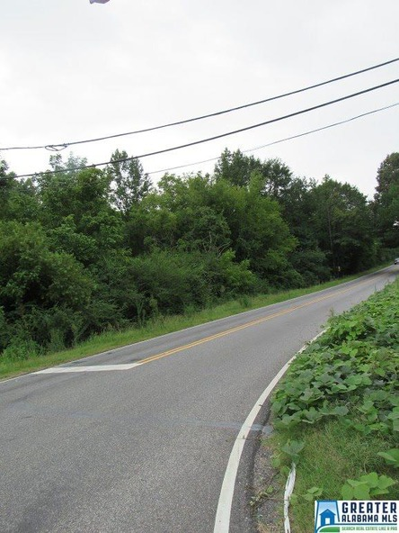 7634 Bankhead Hwy., Dora, AL 35062 Photo 13