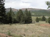 Home for sale: 10814 S. Hwy. 67, Cripple Creek, CO 80813