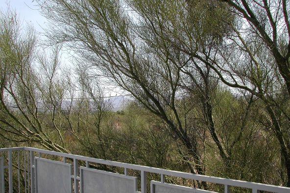 1121 W. las Palmas Dr., Tucson, AZ 85704 Photo 14