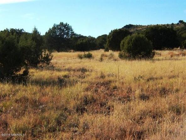 130 Bunny View, Ash Fork, AZ 86320 Photo 6