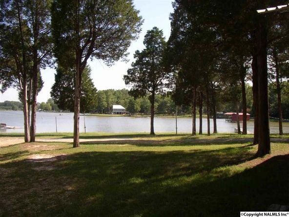 2510 Hwy. 411, Leesburg, AL 35983 Photo 3