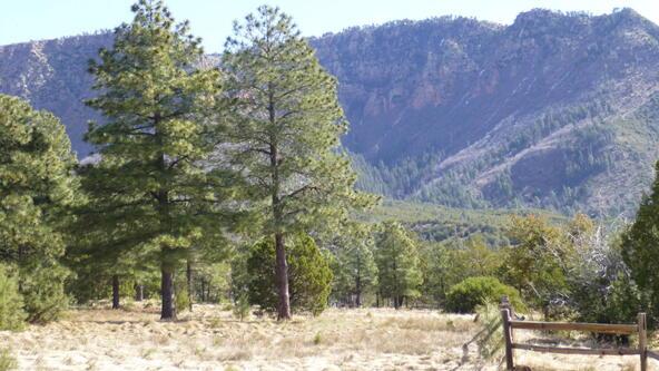 220 W. Zane Grey Cir., Christopher Creek, AZ 85541 Photo 47