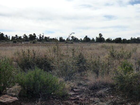 Tbd N. Mclane Rd., Payson, AZ 85541 Photo 15