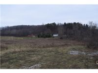 Home for sale: Wolford Rd., Uhrichsville, OH 44683