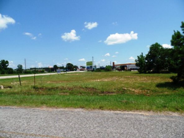 87 Hwy. 84, Monroeville, AL 36460 Photo 2