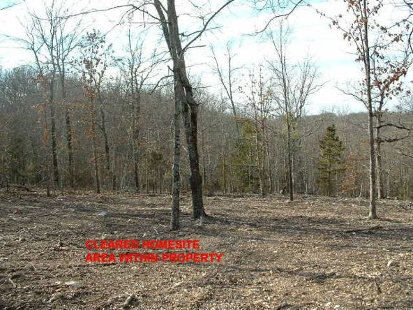 Lts 83-86 Linwood Dr., Briarcliff, AR 72653 Photo 2