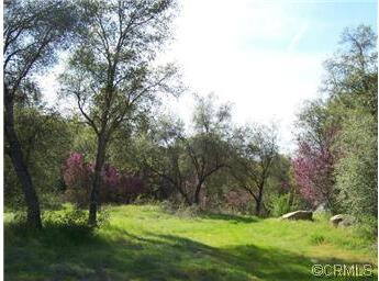 0 Lone Star Cir., Mariposa, CA 95338 Photo 20