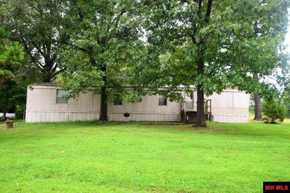 37 Busch Ln., Midway, AR 72651 Photo 4