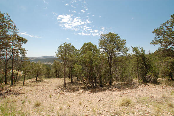 Lot 21 Spencer Rd., Alto, NM 88312 Photo 3
