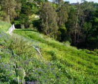 Home for sale: 125 Canon View Rd., Santa Barbara, CA 93108