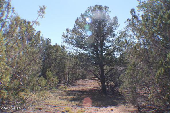 2 Acres Off Of Acr N. 3114, Vernon, AZ 85940 Photo 5