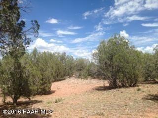 171 Friendship/Conwayden, Ash Fork, AZ 86320 Photo 28