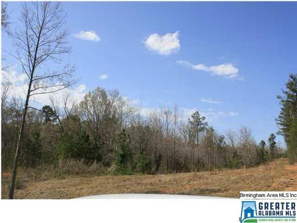 4135 Warrior Jasper Rd., Dora, AL 35062 Photo 1