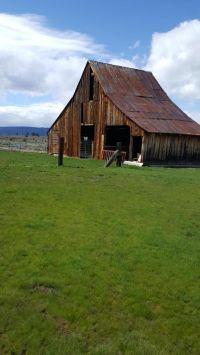 Home for sale: 559-050 Ca-139, Adin, CA 96006