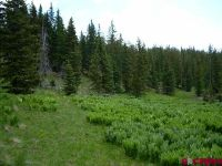 Home for sale: 6 Acres On Cumbress, Antonito, CO 81120