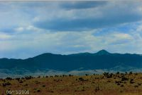 Home for sale: 108 Possum Trail, Carrizozo, NM 88301